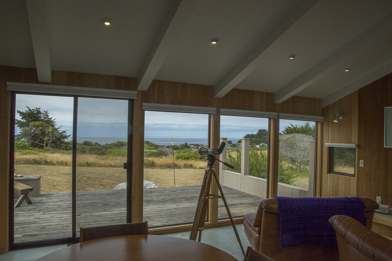 Interior of the living room looking out through a wall of windows at the meadow and ocean beyond.
