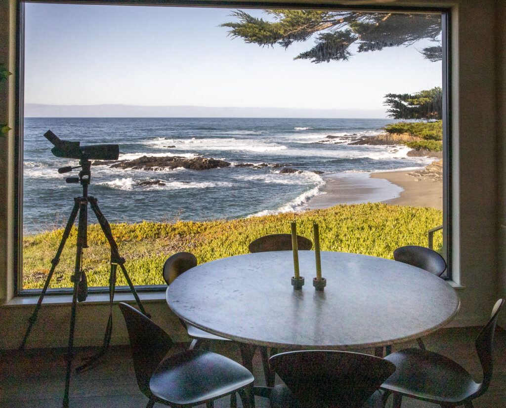 A dining room table with view of the ocean out a large window.